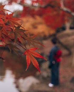 Autumn Kimono - Blog-2.jpg