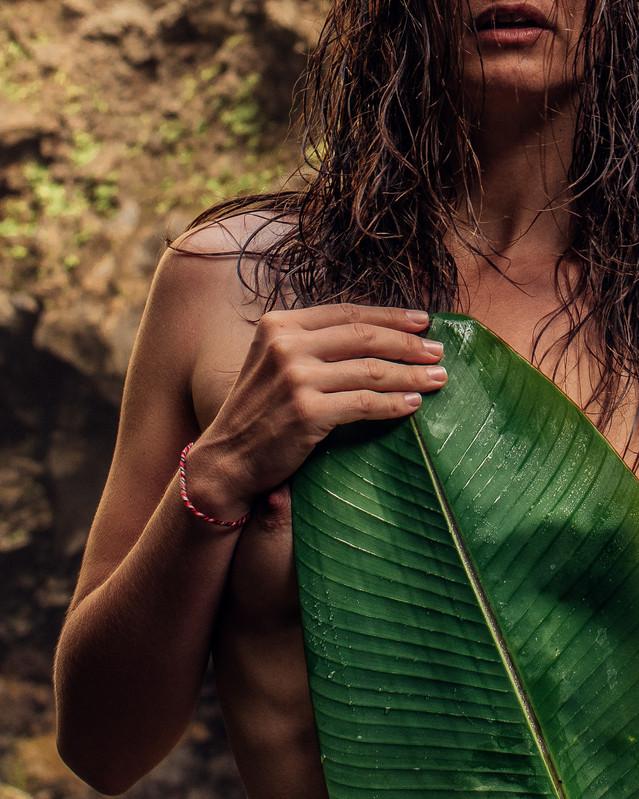 jungle-4.jpg