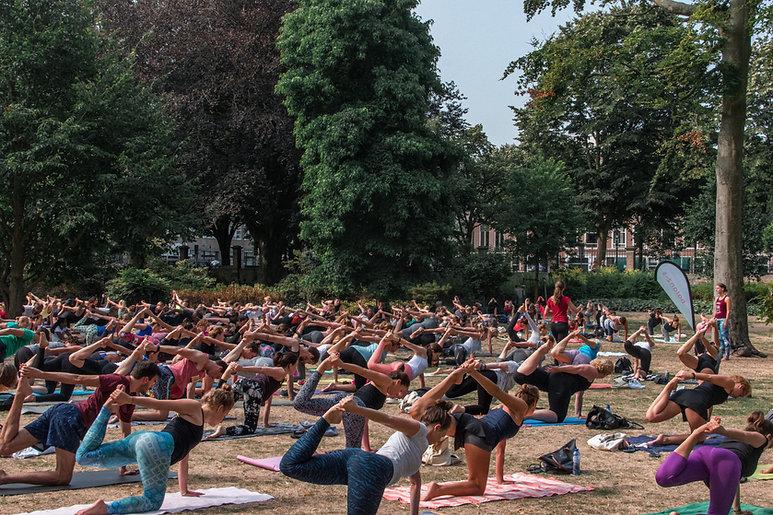 balanzs yoga-2.jpg