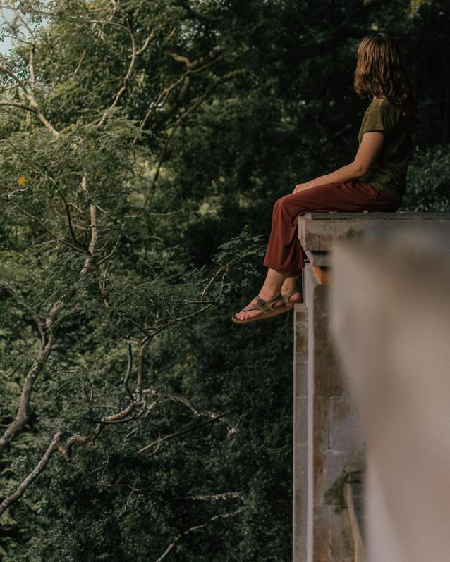 Monkey Forrest-5.jpg