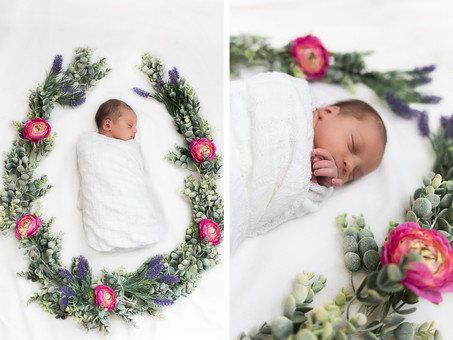 Highlights: Ellie Grace's Newborn Session