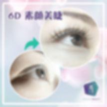 素顏術 3D美睫 提升至 6D美睫