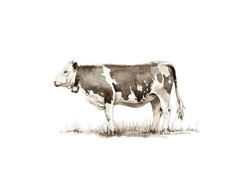 Braune Kuh Kunstdruck