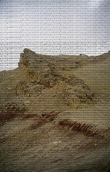 natalie-koffman-viral-landscape--invisib