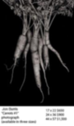 Carrots #1 copy.jpg