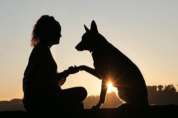 chien et humain.jpg