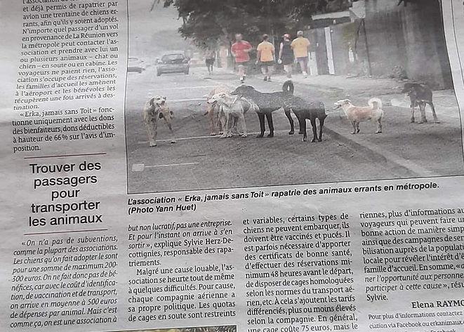 le_quotidien_de_la_réunion_du_9_aout_20