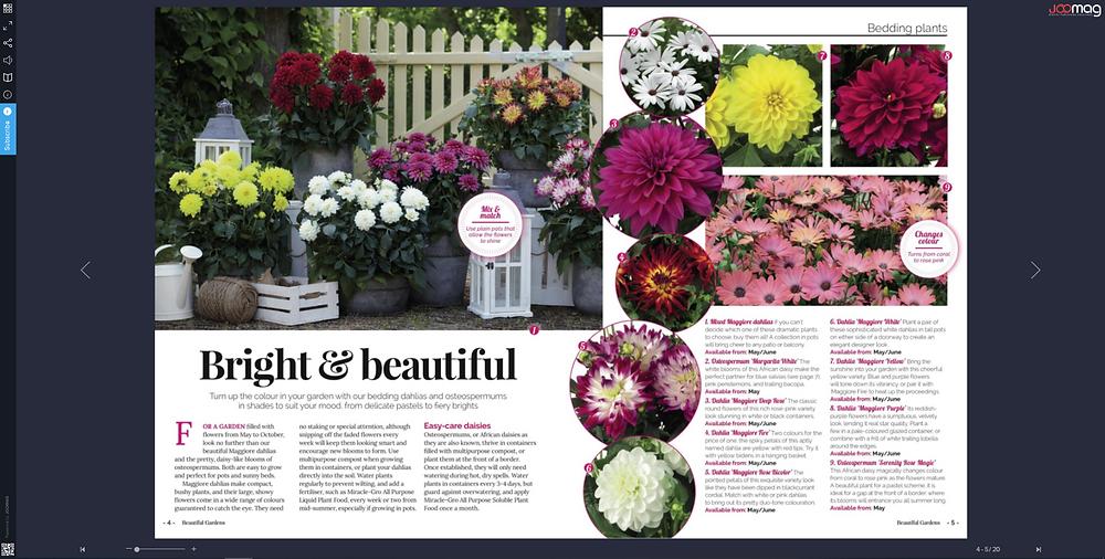content marketing in garden industry