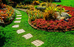Content Marketing's Role in the Lawn and Garden Industry