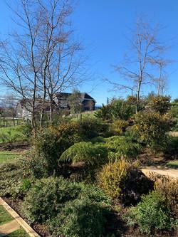 Jardín Casa Wulf