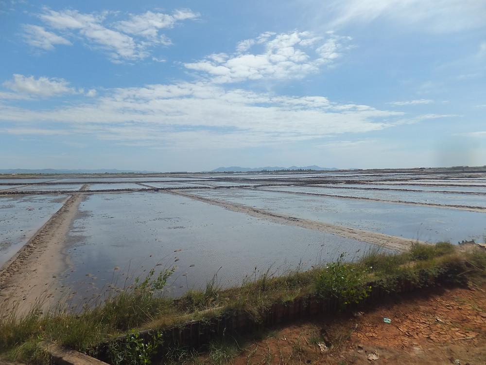 Salt Fields Kampot