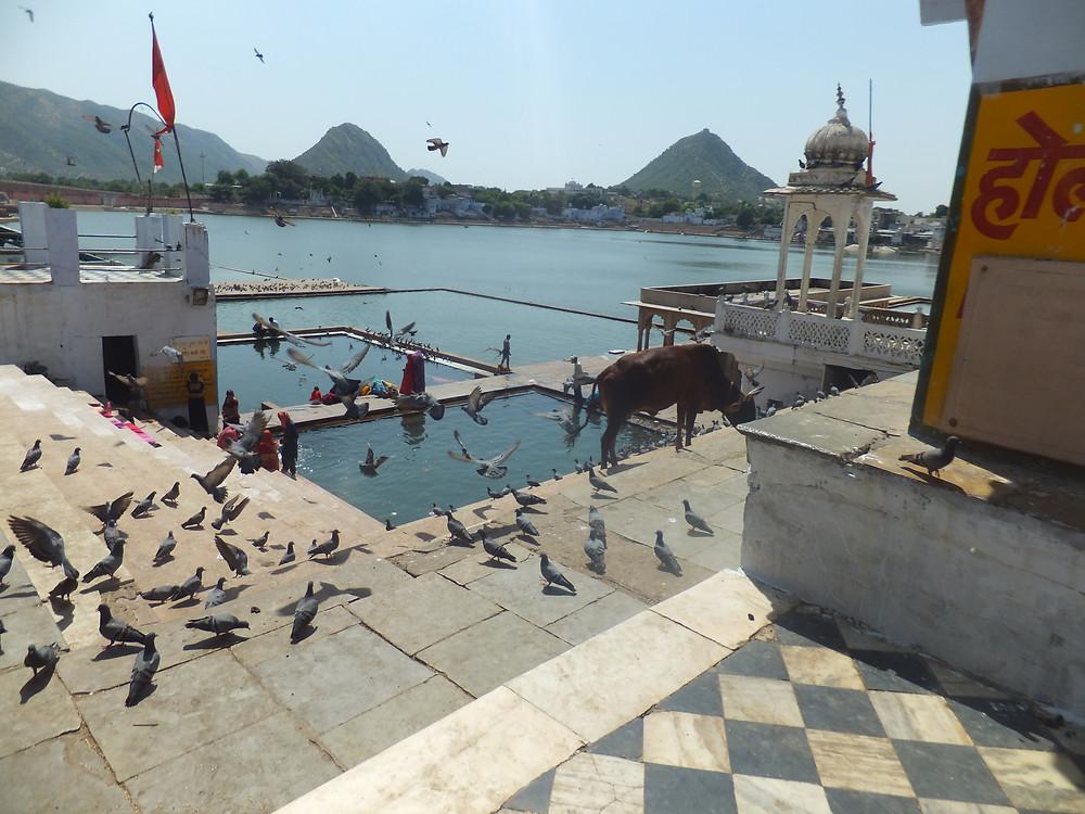 india travel itinerary