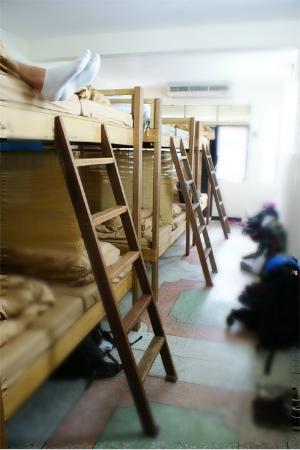 born-free-hostel.jpg