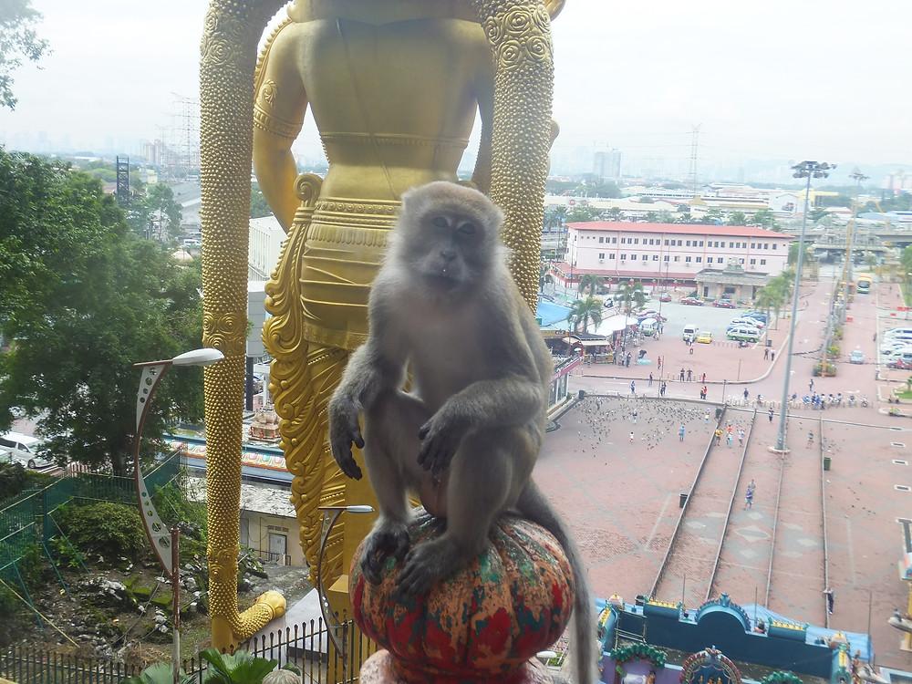 to do in Kuala Lumpur
