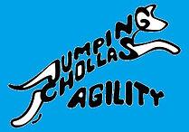 JCAC Logo blue background.jpg