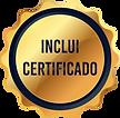 Sele_Certificado.png