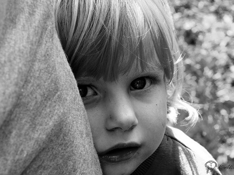 What makes a child shy?