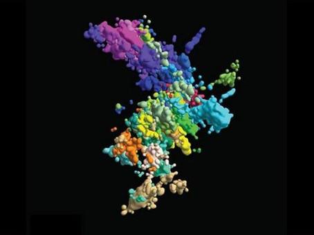 Deep Freeze para revelar las interacciones de la ultraestructura molecular de las células