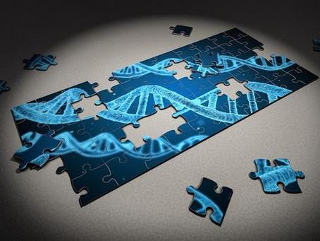 La proteína ETV1 puede actuar como un biomarcador para el cáncer gastrointestinal