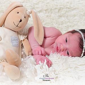 La princesa Daniela