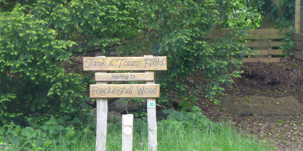 Teddy Bears Picnic & Woodland Adventures at Standen House
