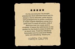 Positive Review - Karen Galpin-30