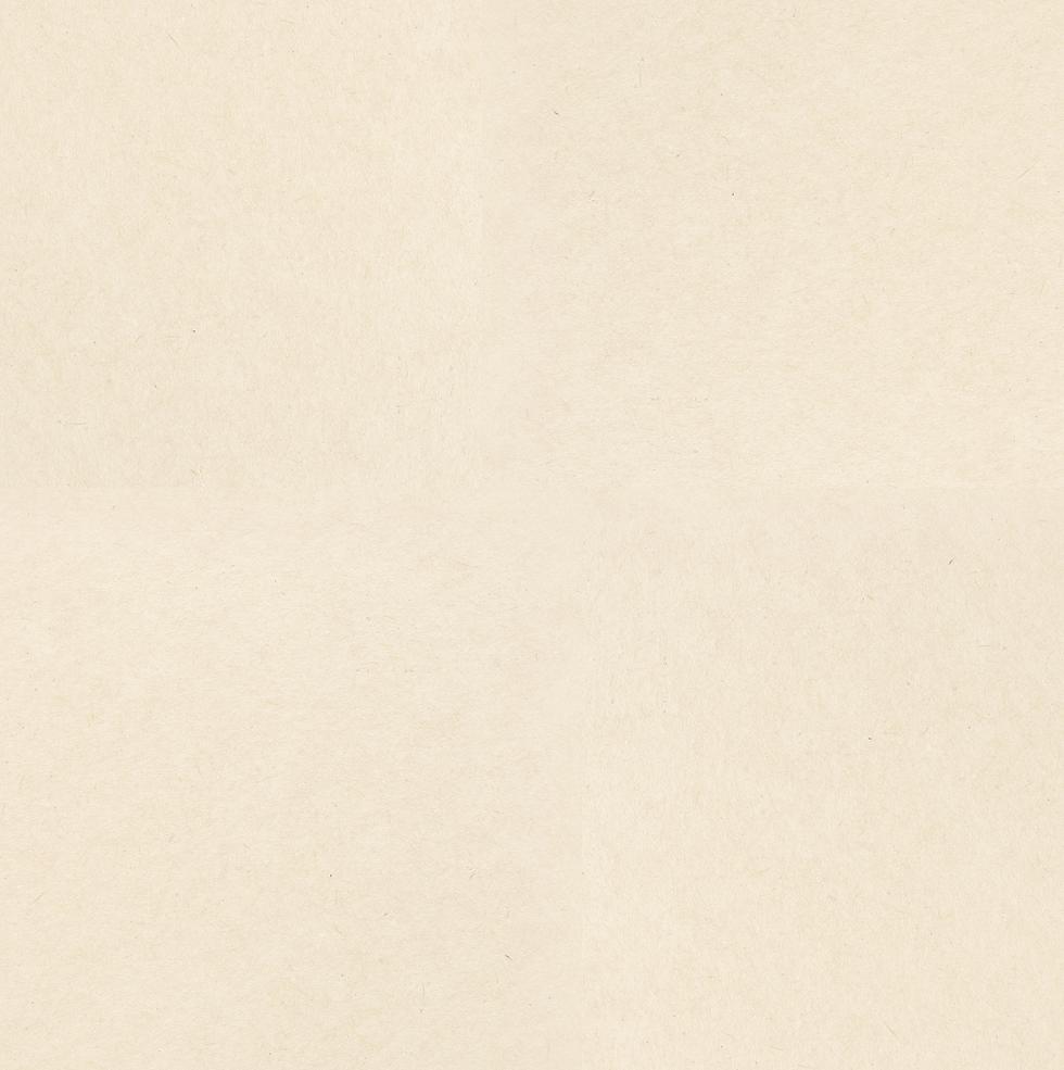 Brown%20Paper%204%20times%20bigger_edite