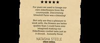 Positive Review -Natasha Steele.png