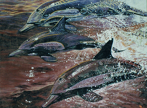 Dolphins. Western Australia Art Society
