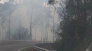 Jan 28 2020 Smoke danger.
