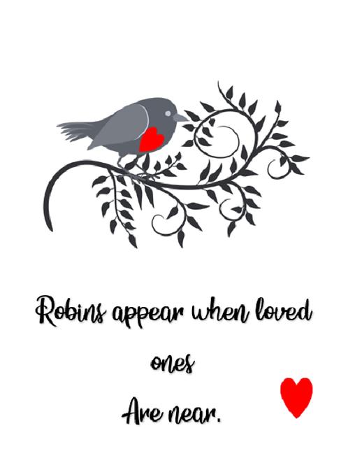Robins appear ~ Robin 🐦