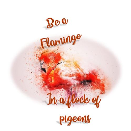Be a flamingo 💜 ~ flamingo