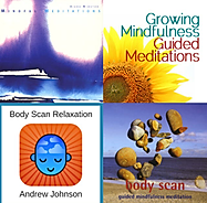 mindfulness MEDITATIONS.png