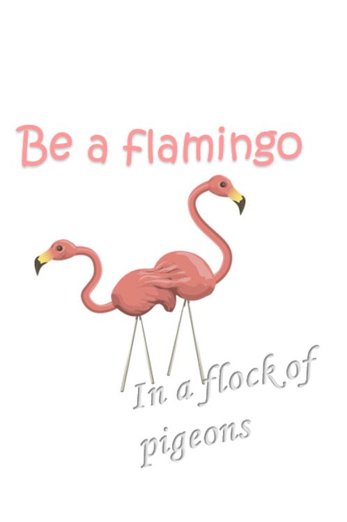 Be a flamingo ~ Wishcard