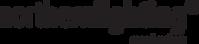 northernlighting-logo.png