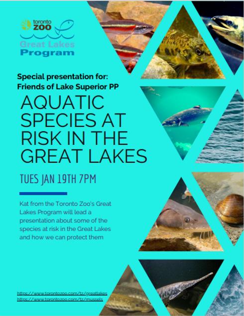 Toronto zoo LSPP.PNG