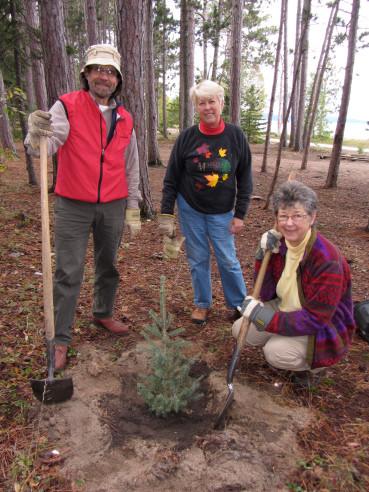 Tree planting at Agawa Bay