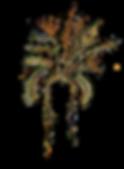 MAYSEA_logo_05.png