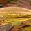 Thumbnail: Mystic Gold
