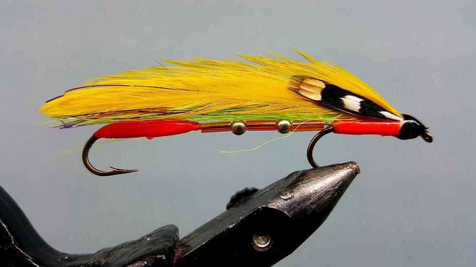 Sunfish Tandem