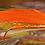 Thumbnail: Holo Orange