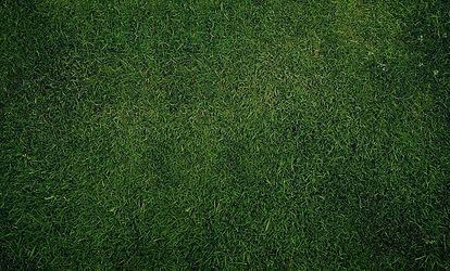 dark-green-grass-texture-and-high-resolu