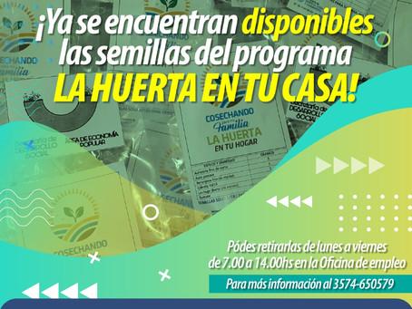 ¡Ya se encuentran disponibles la semillas del Programa la Huerta en tu casa!