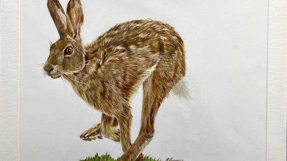 Running Hare - original artwork