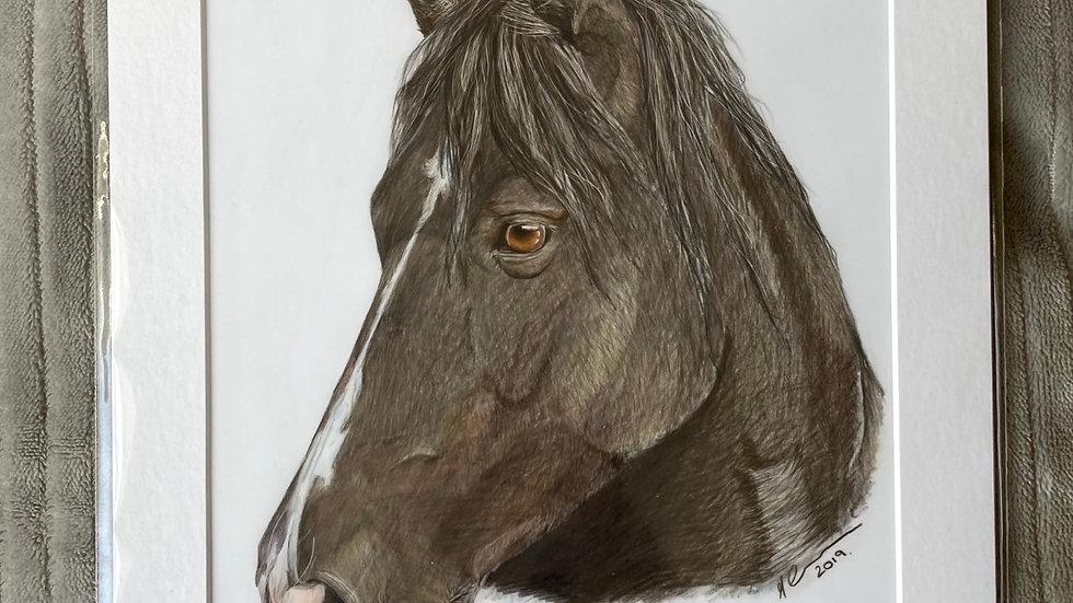 Little Black Pony - original artwork