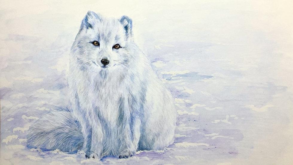 Christmas Card 2021 - Arctic Fox