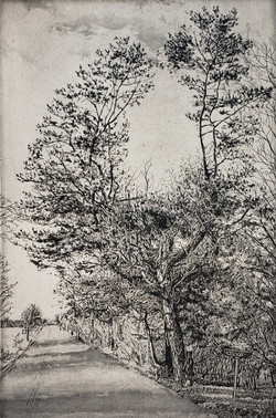 Tree in Fredonia_2020_Etching and aquati