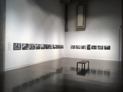 Cropped Photographic Reflections Install