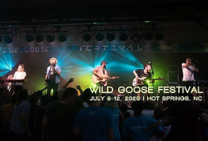 Wild Goose Festival 2020.jpeg