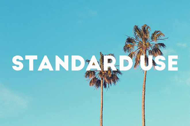 STANDARD .png
